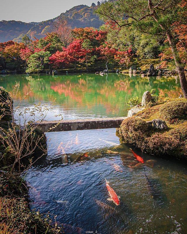 女子で京都旅行行くならここ