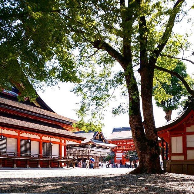 京都両行で行っておきたい八坂神社