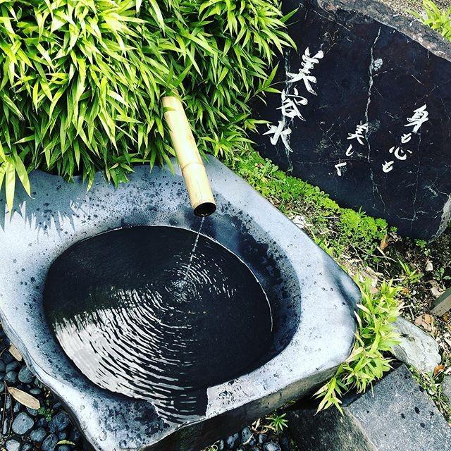京都旅行八坂神社