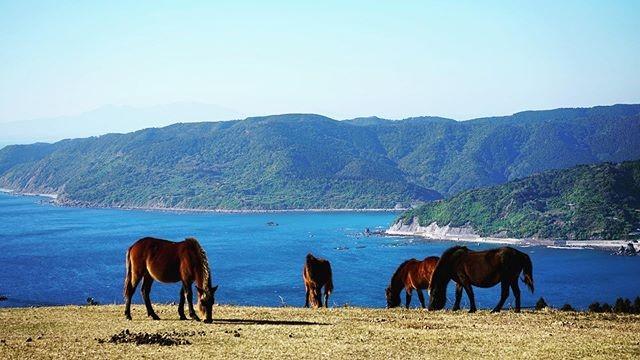 九州観光でおすすめのインスタ映え絶景スポット